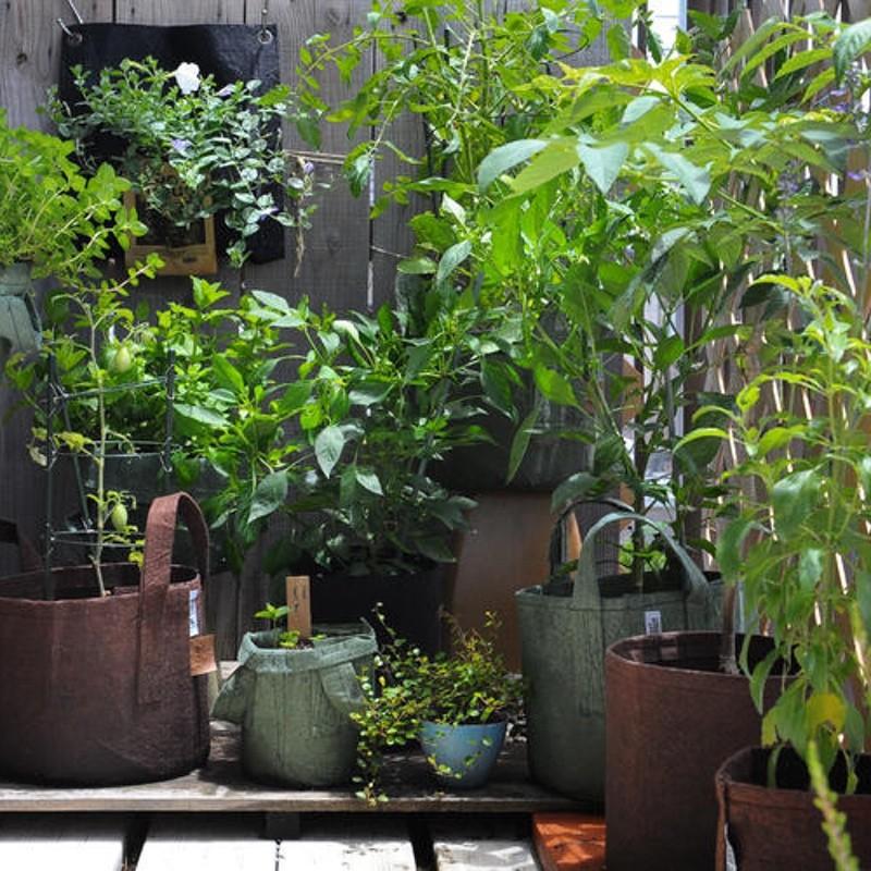 56L Géotextile Smart grow Pot déco jardin poignées 20 Root Pouch noir